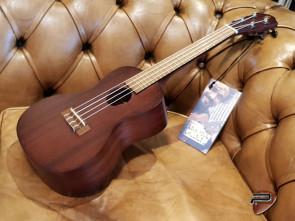 Baton Rouge Concert ukulele