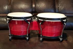 Bongo trommer