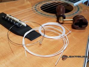 Guitar Reparation: Nye Strenge på Western guitar