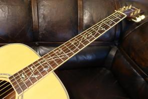 Ibanez western guitar med LifeTree