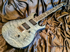 PRS SE Mark Holcomb el-guitar