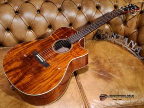 Santana SAN-ST9012HGNA western guitar