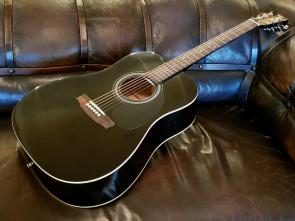 Begynder Western Guitar